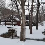 北海道大学冬の構内