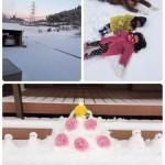 鹿児島積雪情報